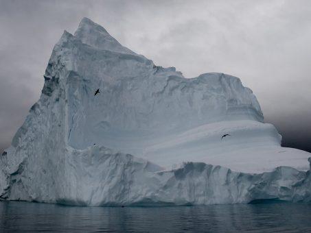 Uncover Antartide