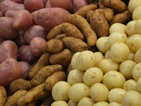 Le proteine della patata possono aiutare a mantenere i muscoli